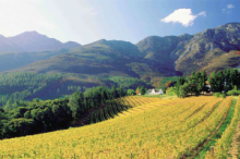 Franschhoek in the Cape Winelands
